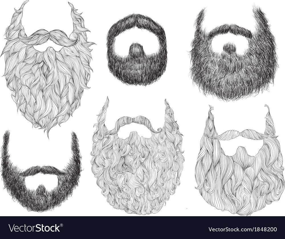 Hand drawn beard set vector