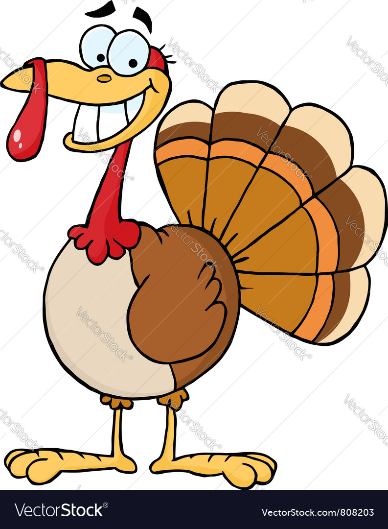 Turkey cartoon character vector