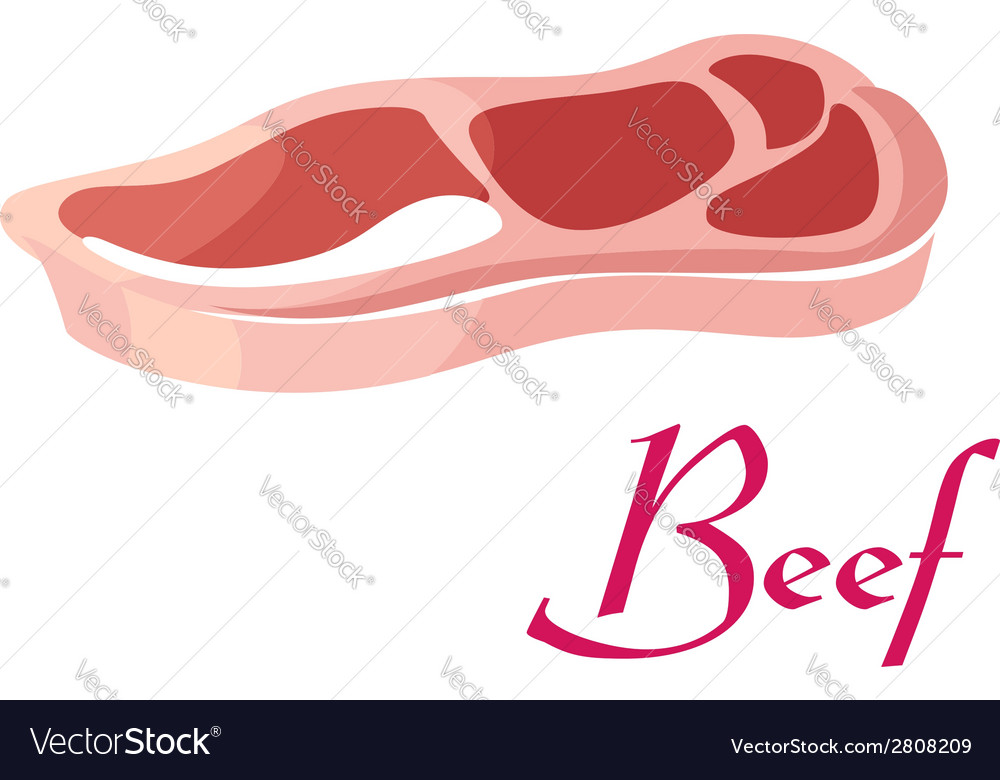Fresh raw beef meat vector