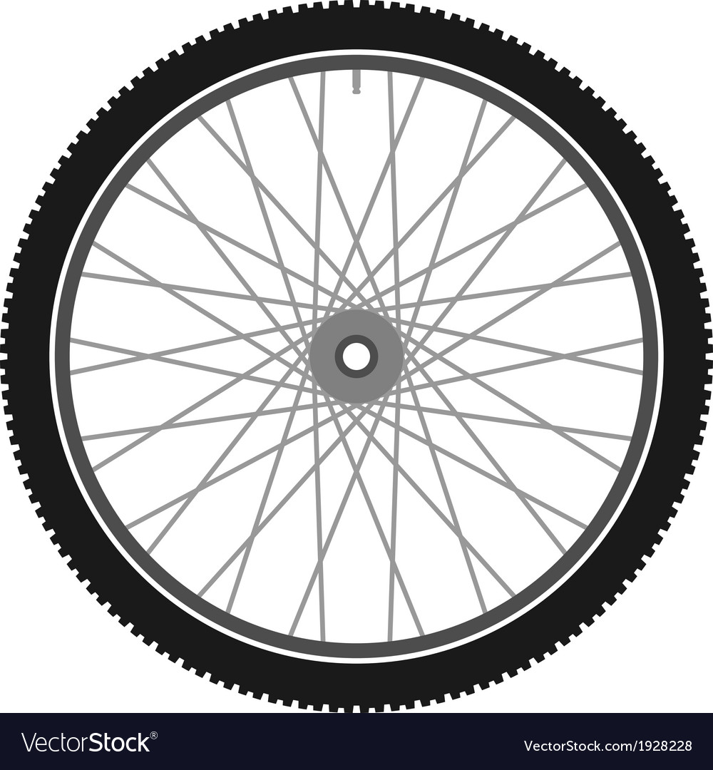 Isolated bicycle wheel vector