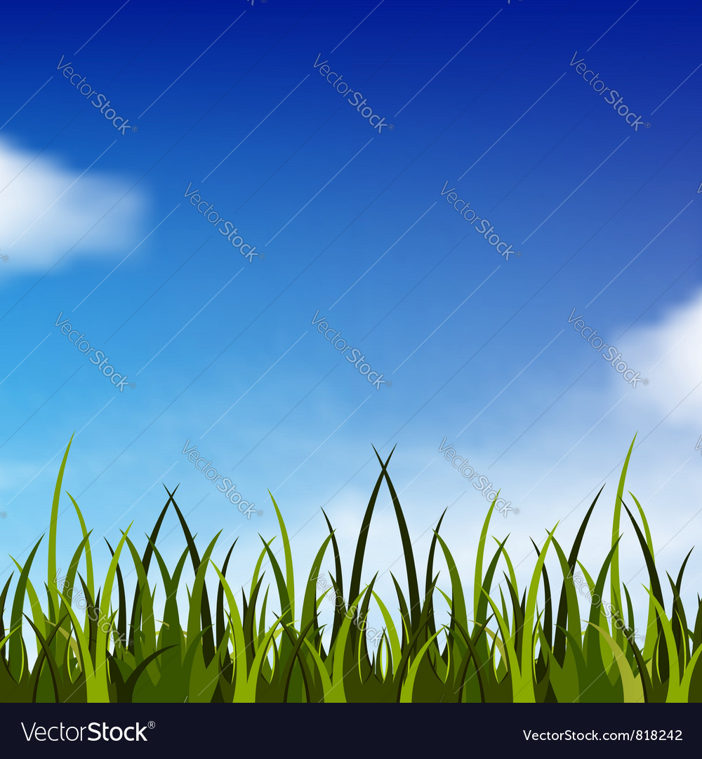 Sky and grass vector