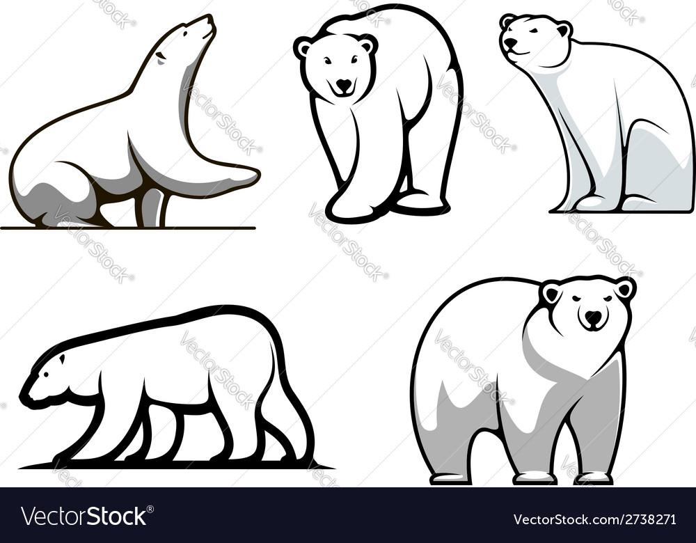 White polar bears set vector