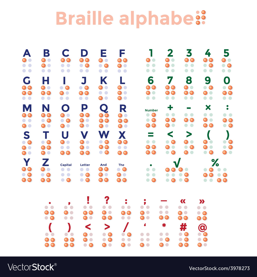 Braille alphabet punctuation and numbers vector