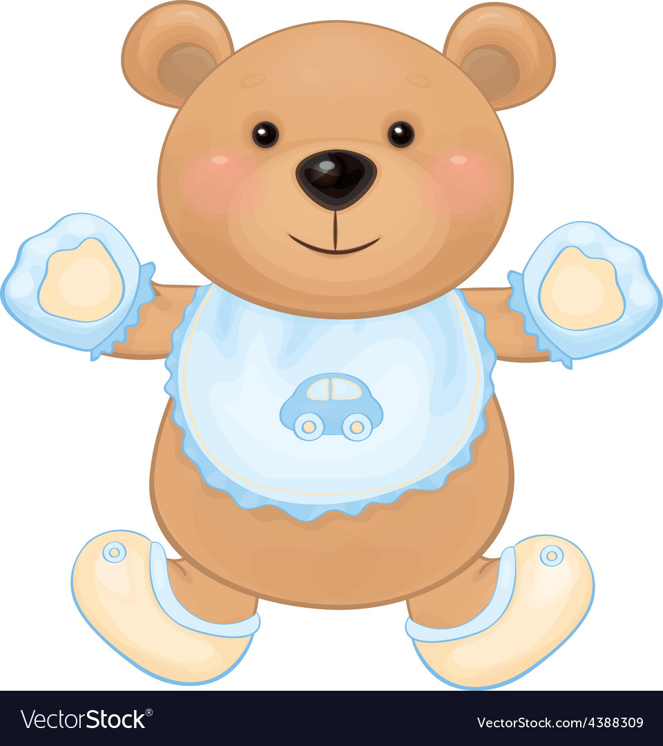 Bear baby boy vector