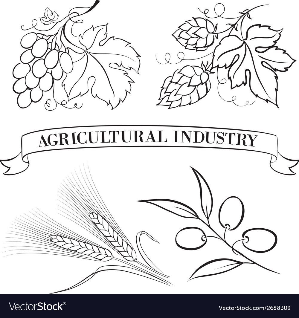Food emblems and labels vector