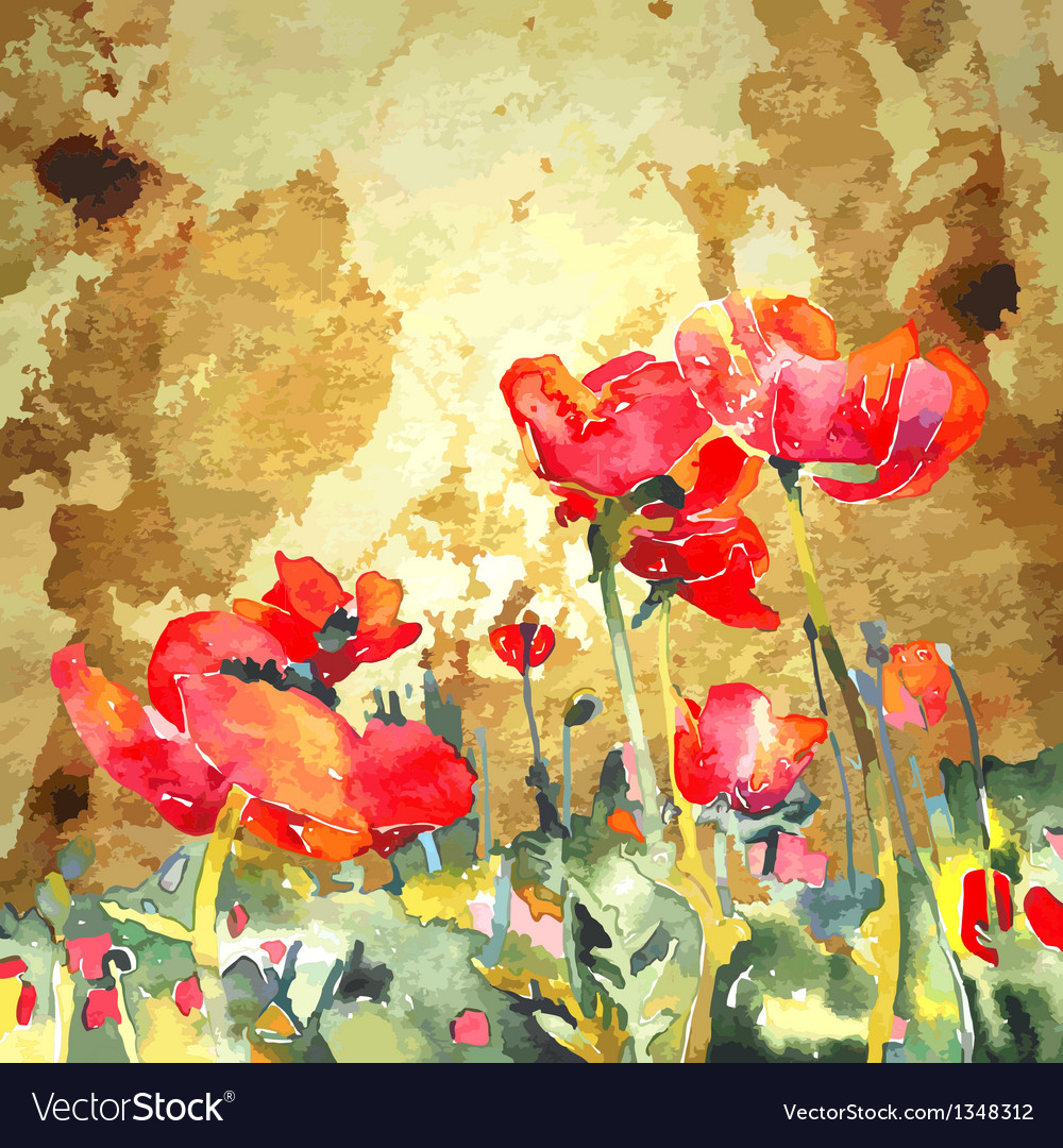 Original watercolor poppy flower in gold backgroun vector