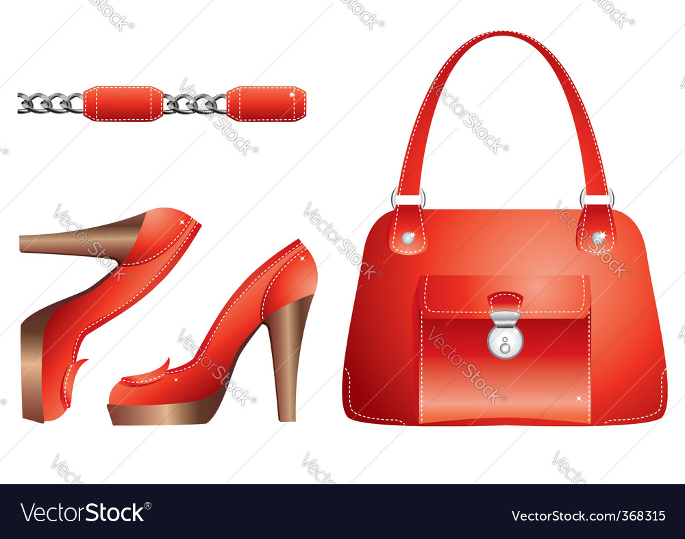 Bags and shoes vector