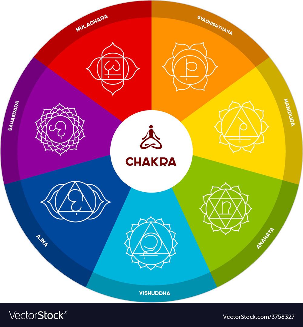 Color chakra scheme on white background vector