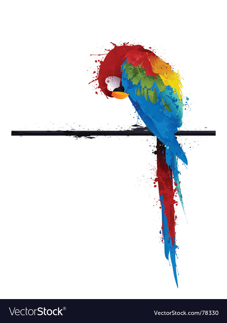 Parrot graffiti vector