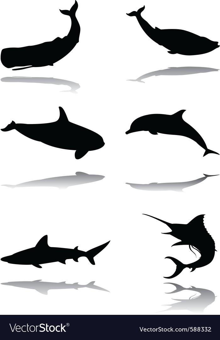 Marine animals vector