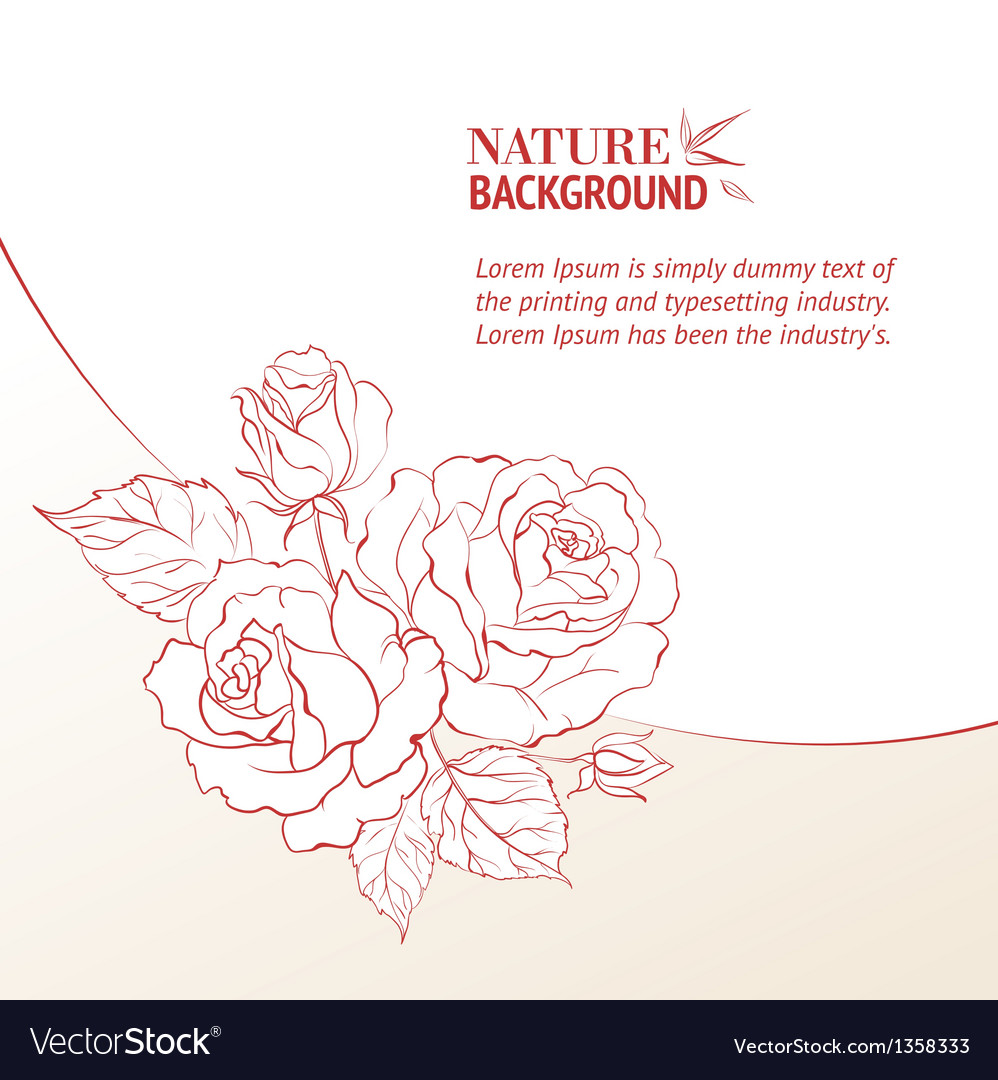 Rose and petals vector