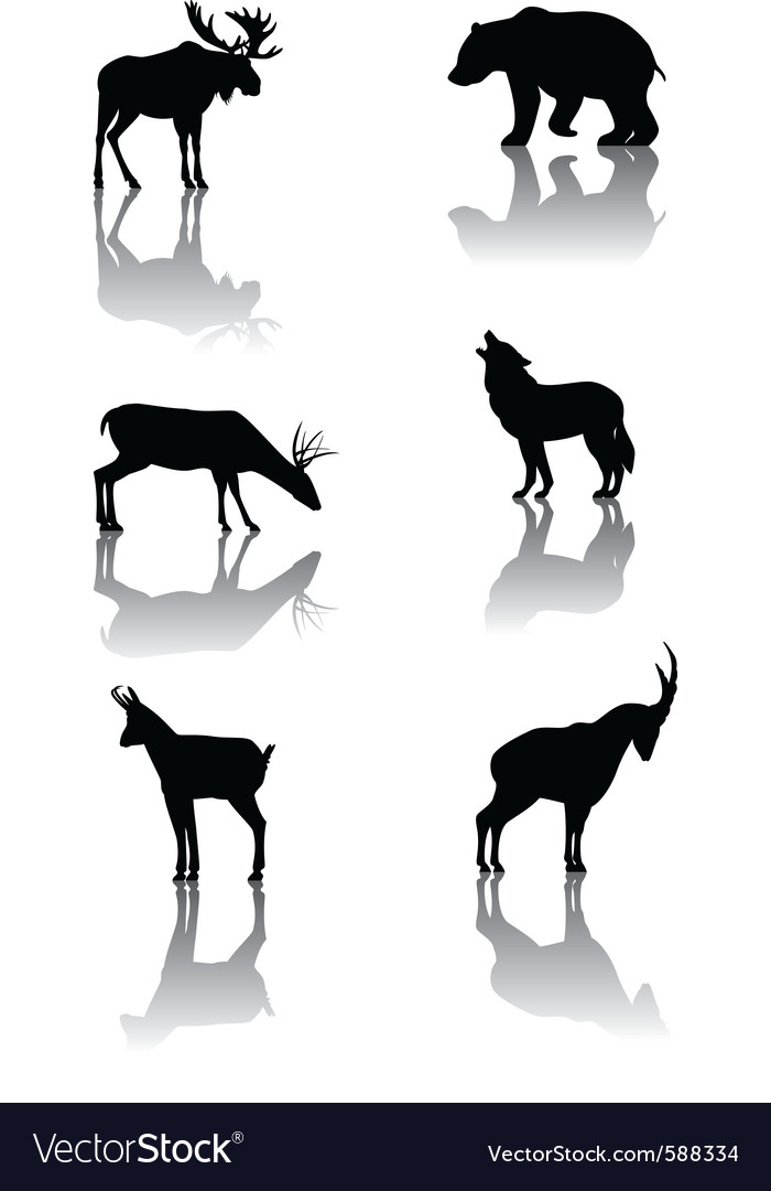 Mountain animals vector
