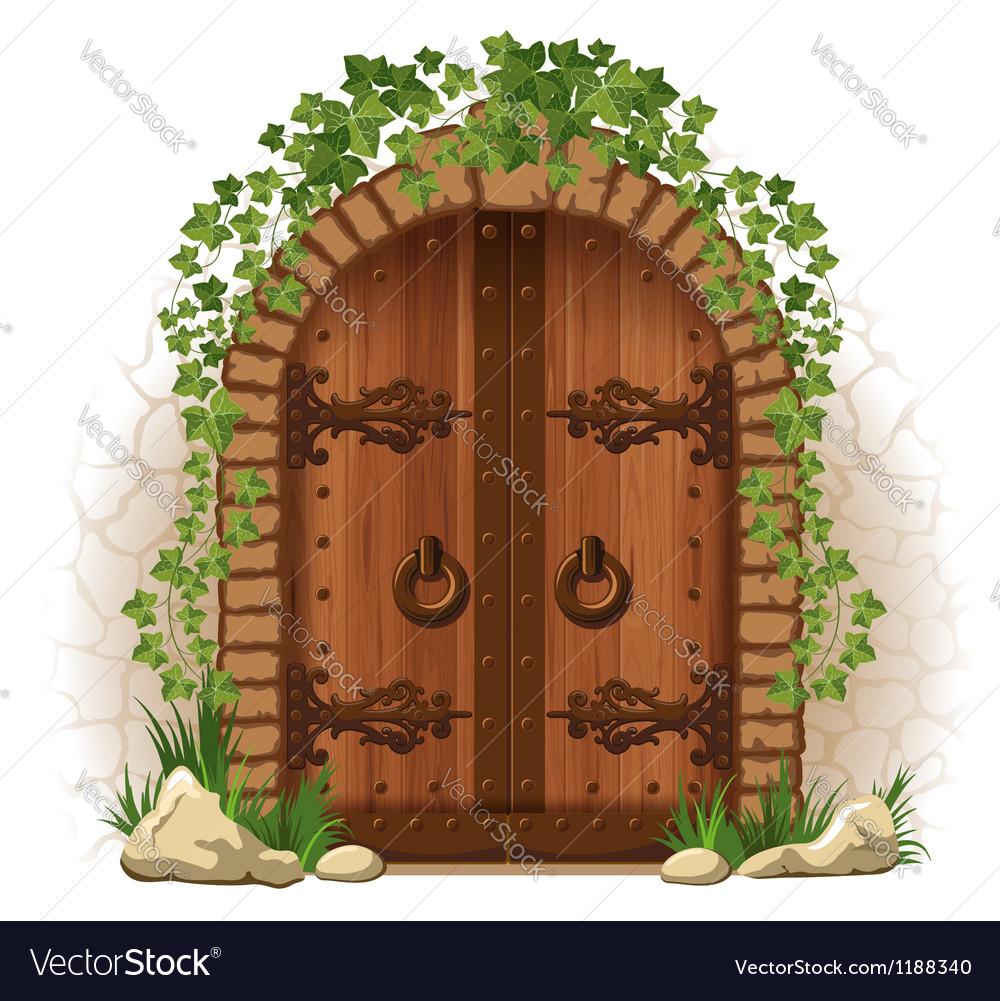 Wooden door with ivy vector