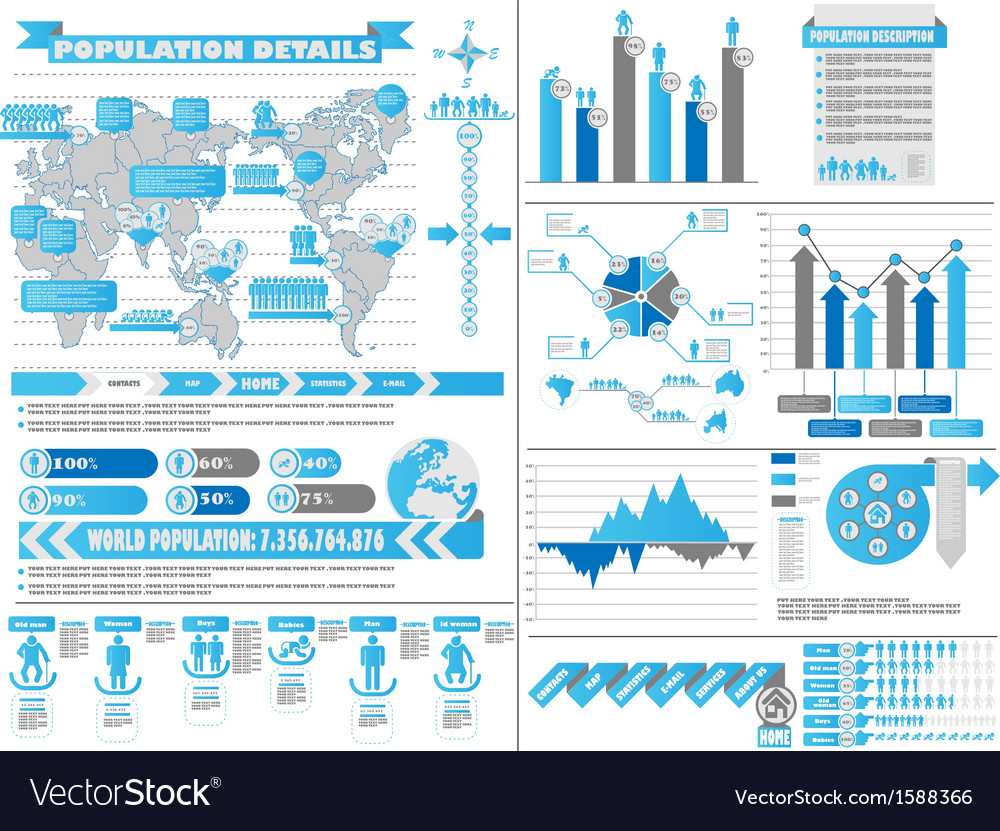 Infographic demographics 2 blue vector