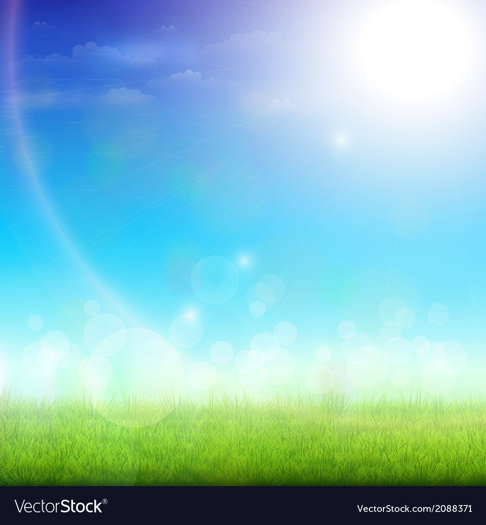 Green meadow on a sunny day vector