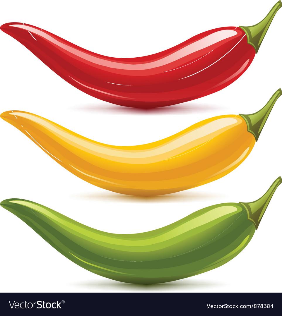 Hot chilli pepper set vector