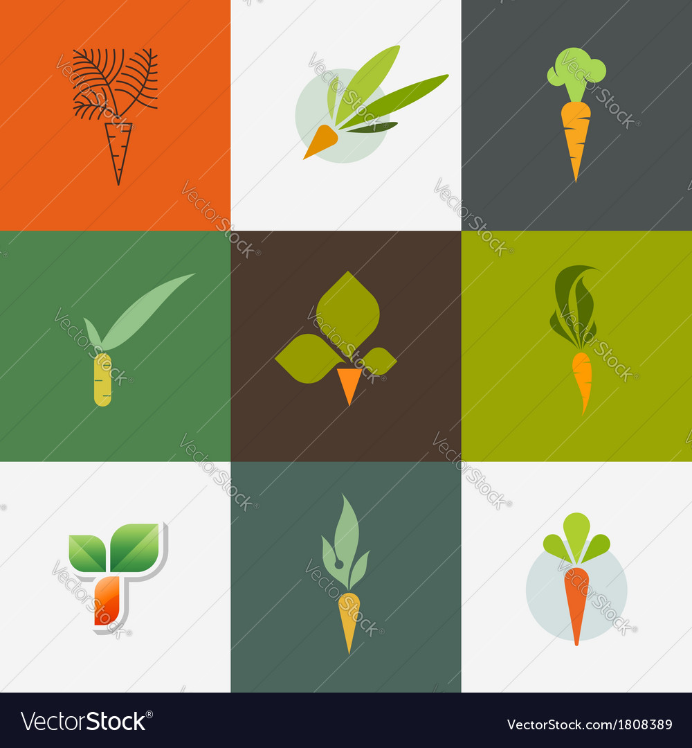Carrot set of decorative design elements vector
