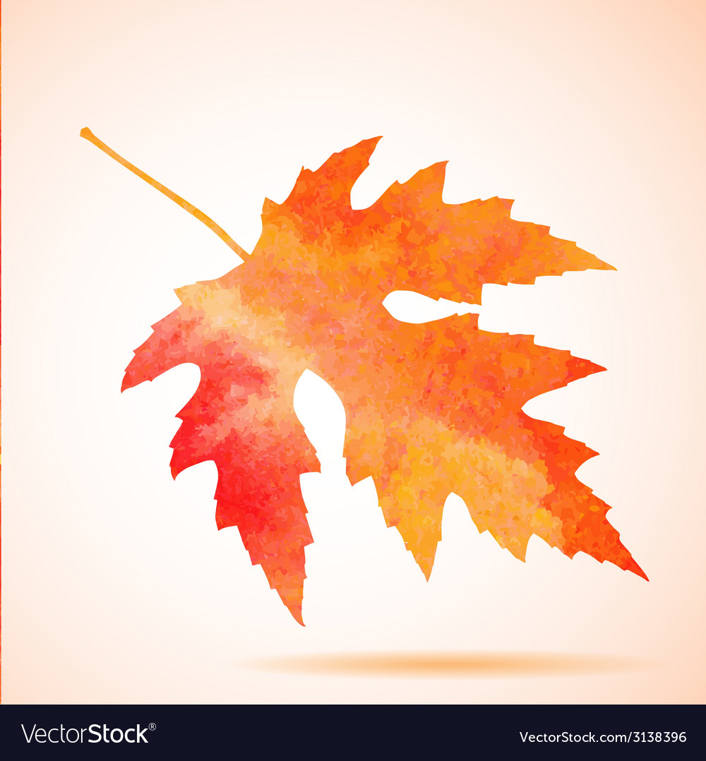 Orange watercolor maple leaf vector