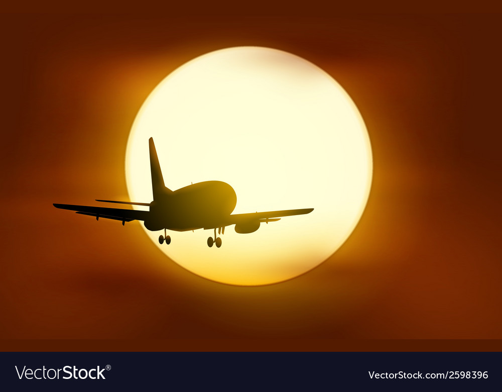 The plane flying into the sunset vector