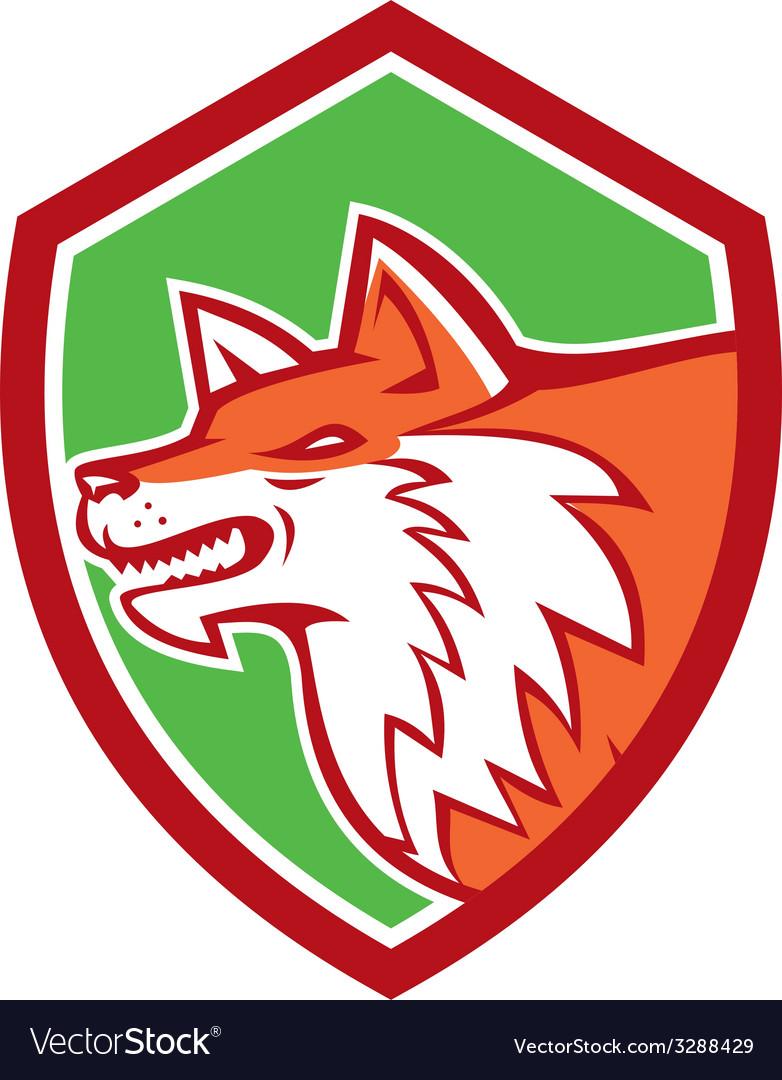Red fox head pouncing shield retro vector