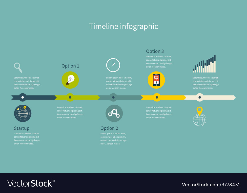 Timeline infographic business with diagrams vector