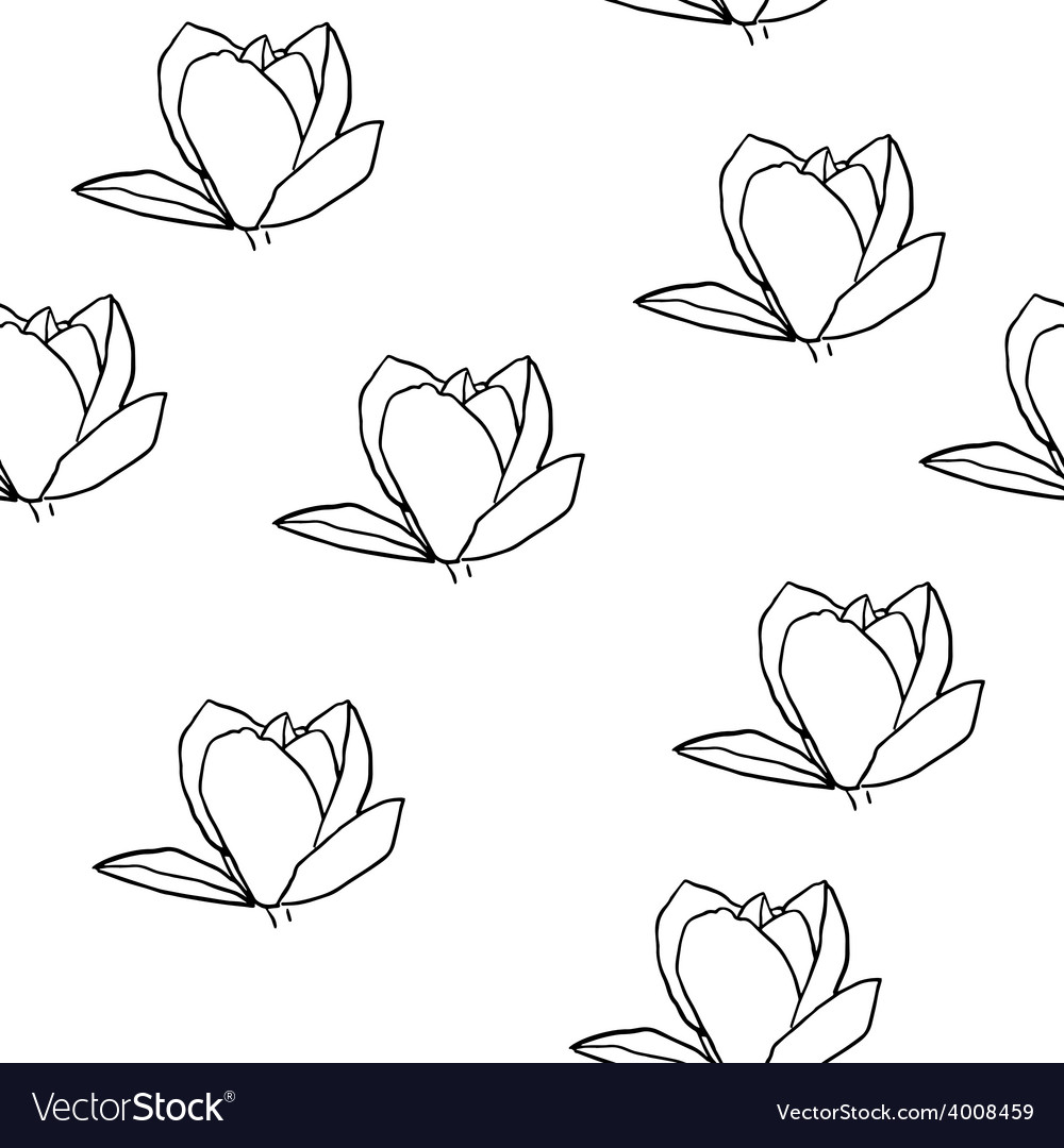 Magnolia seamless pattern vector