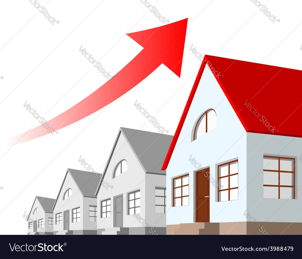 Growth chart estate vector
