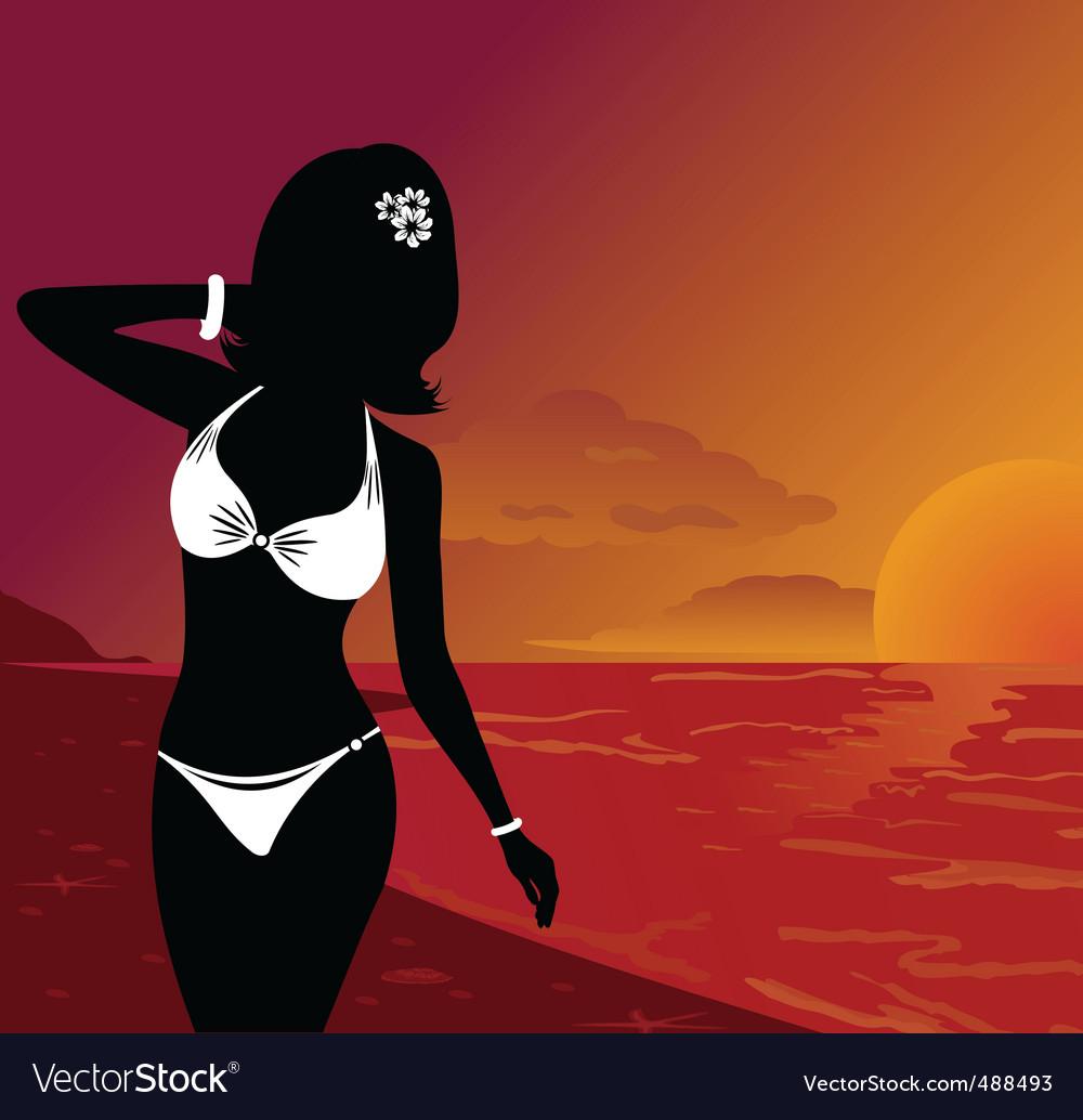 Sunset on beach vector