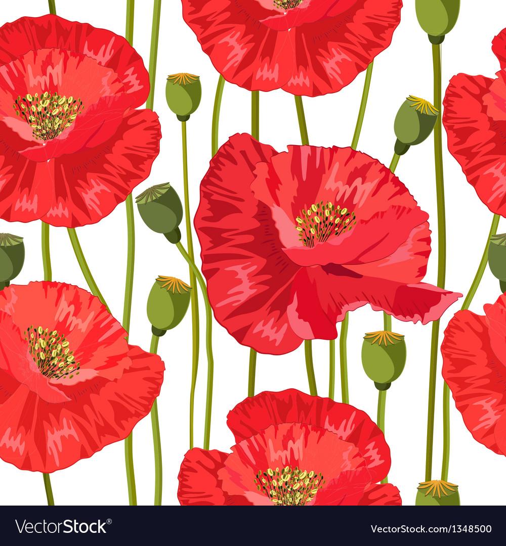 Poppy seamless vector