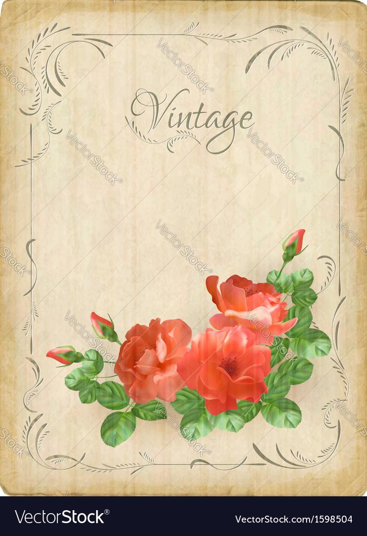 Vintage retro flowers roses postcard border frame vector