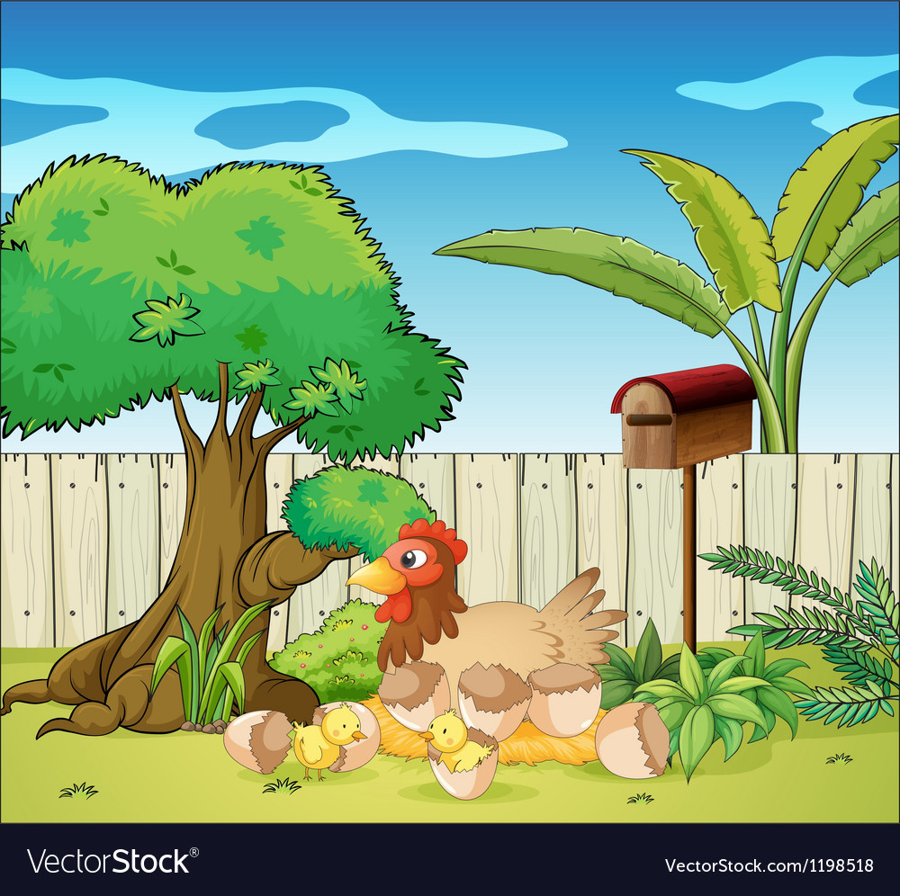 A hen and her chicks vector