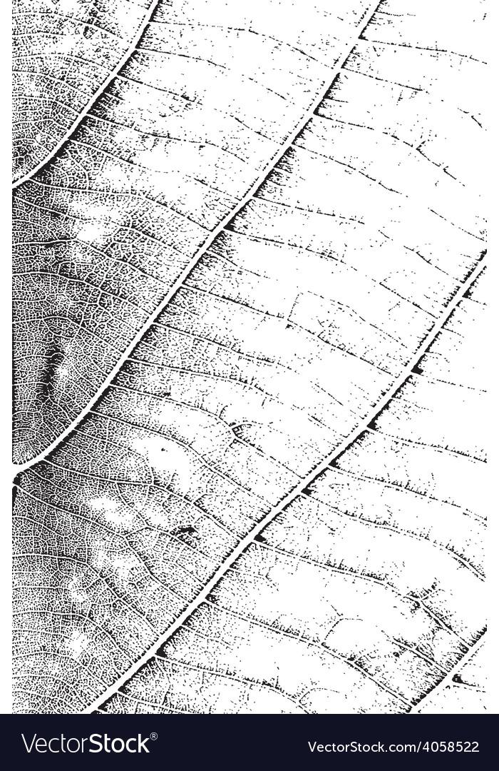 Leaf overlay texture vertical vector