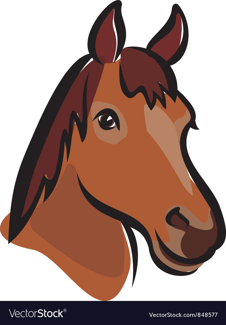 Horse portrait vector