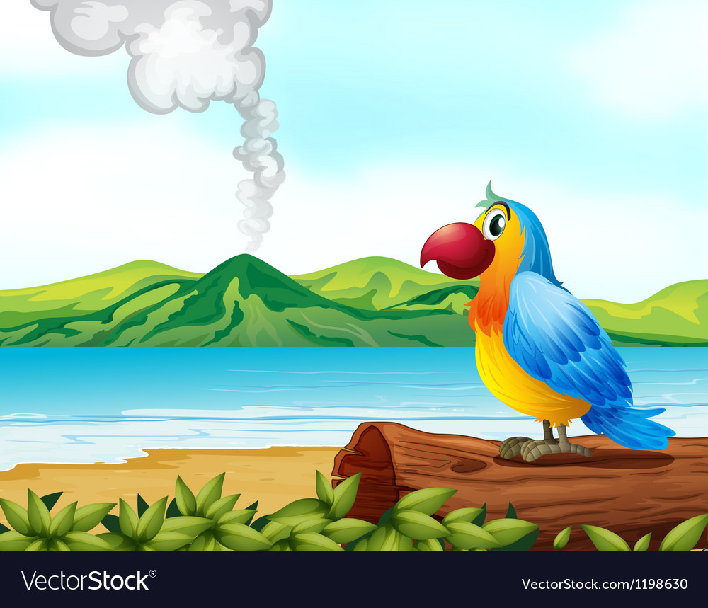A colorful parrot at the beach vector