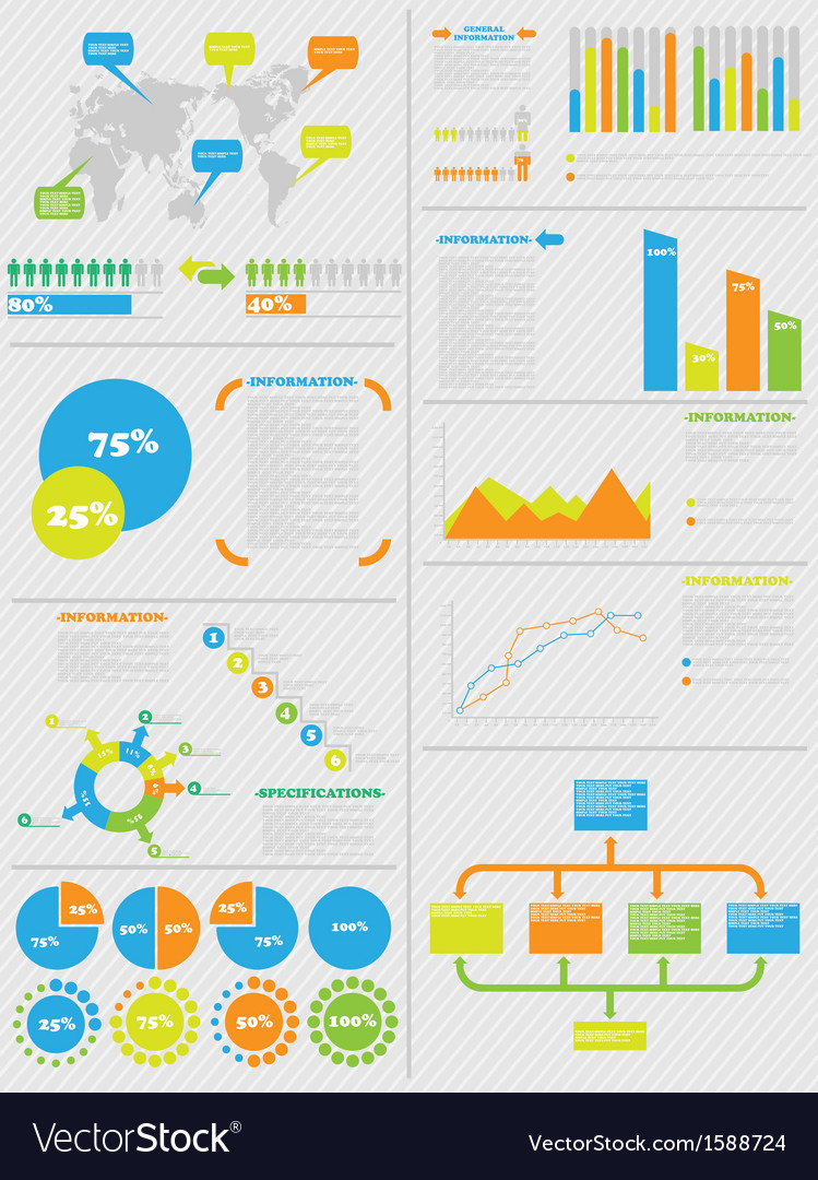 Infographic demographics 5 toy vector
