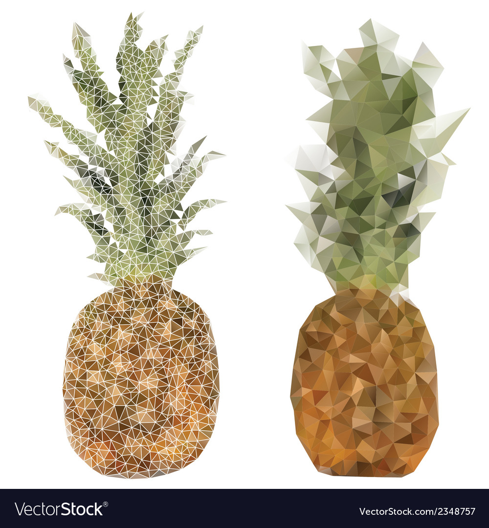Pineapple fruit triangle design vector