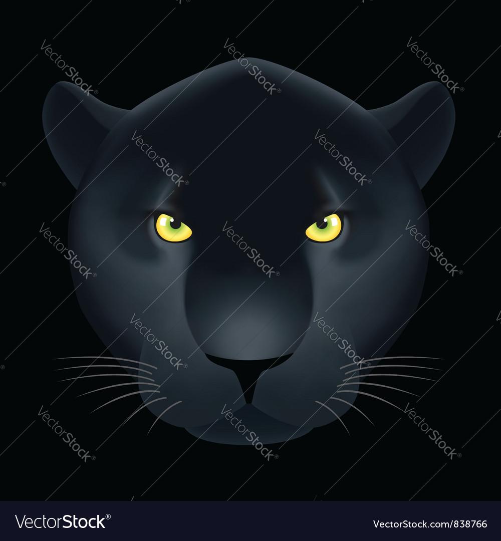 Dangerous cat vector