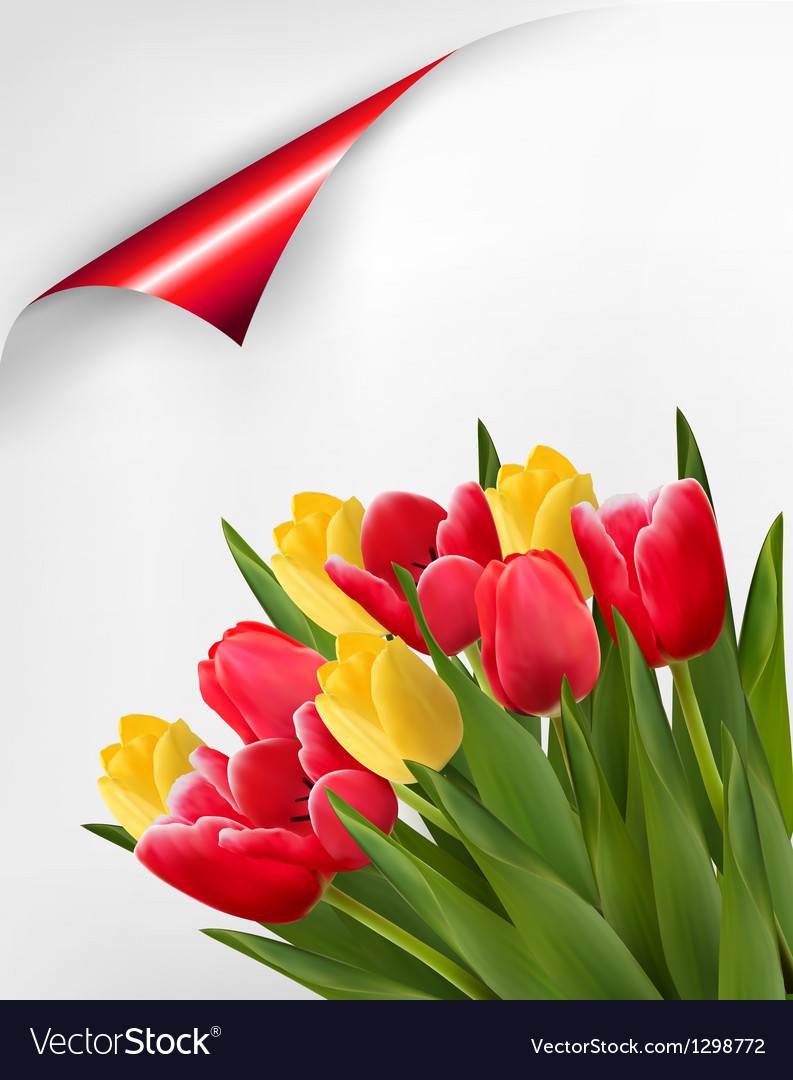 Holiday background with bouquet of red and yellow vector