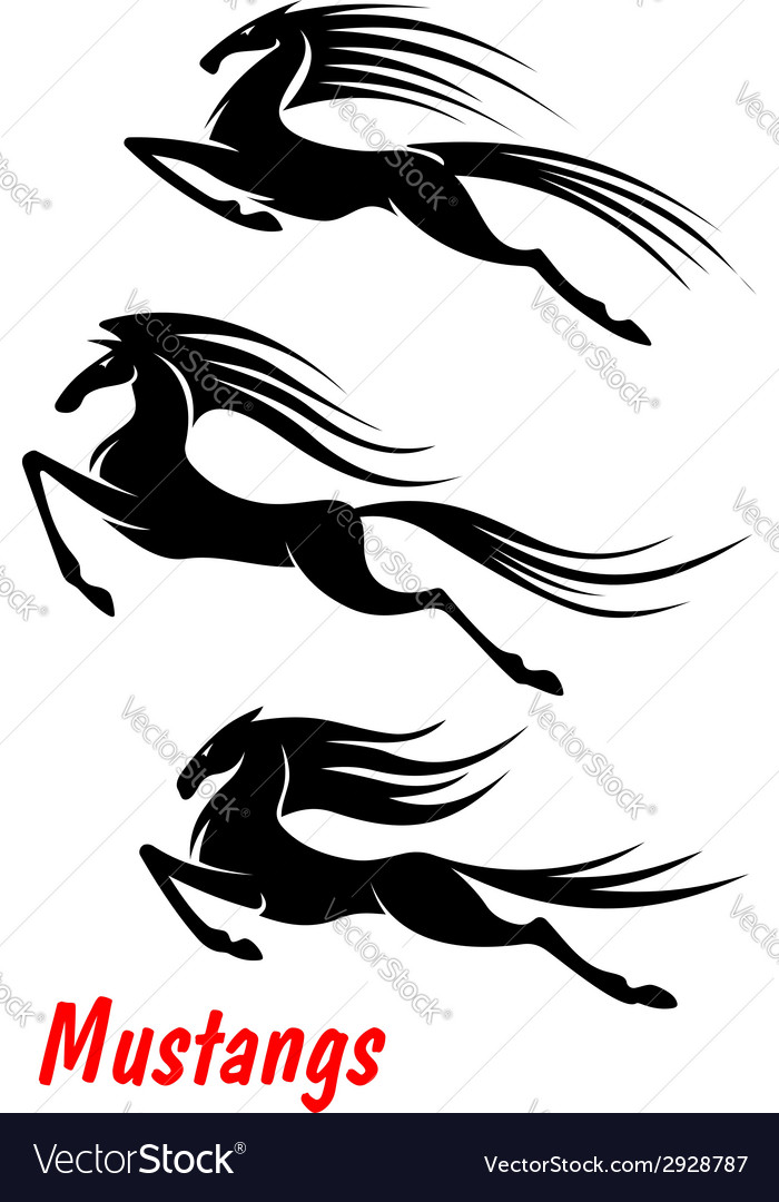 Wild horse mustangs and stallions vector