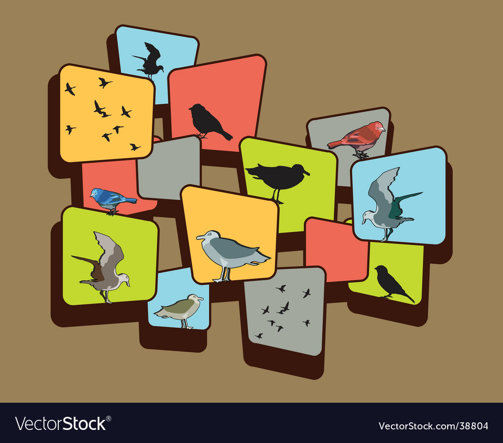 Birds on a brown background vector