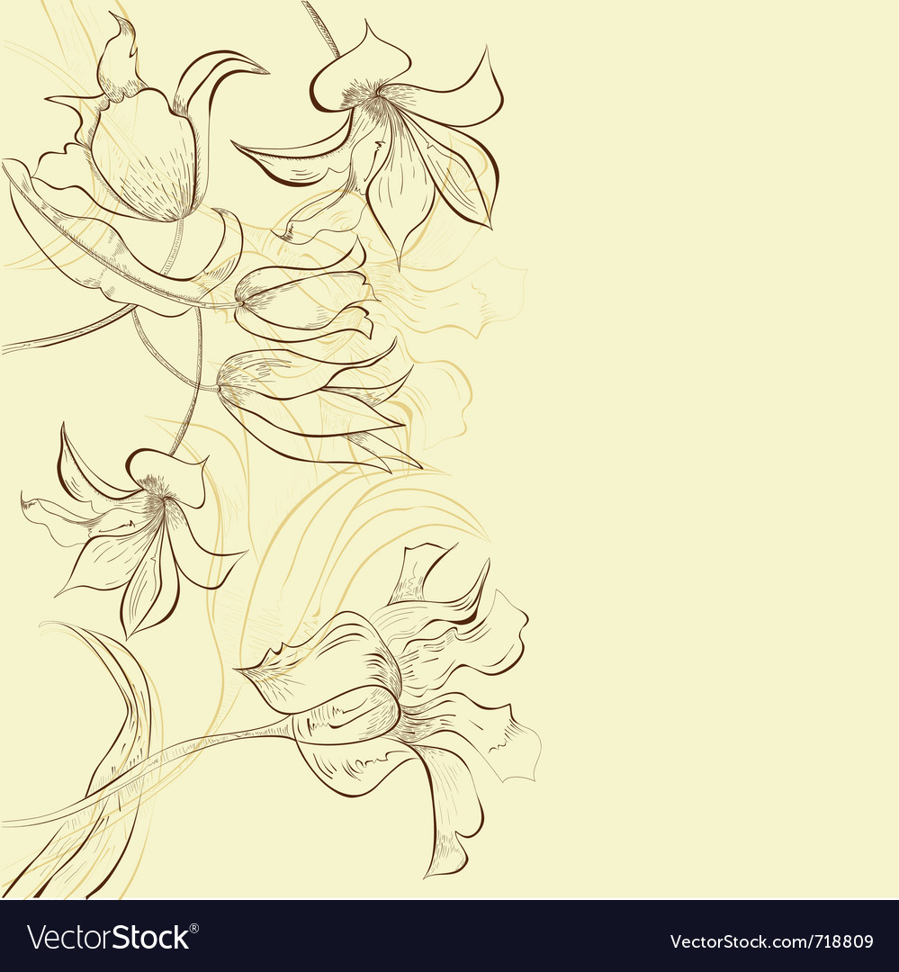 Template for decorative card vector