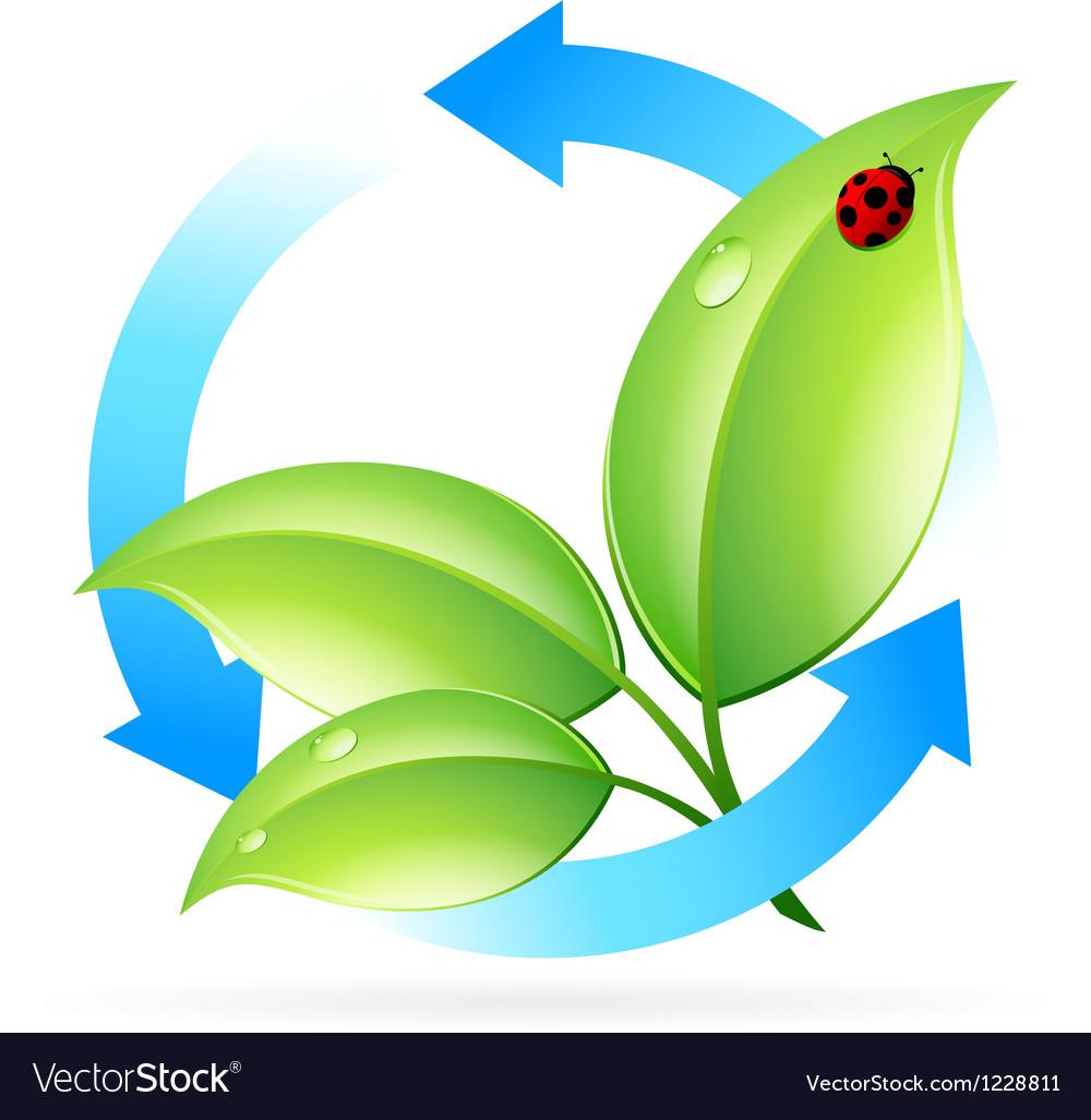 Logo nature recycle vector