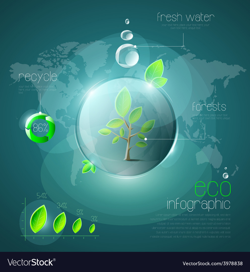 Ecological infographic vector