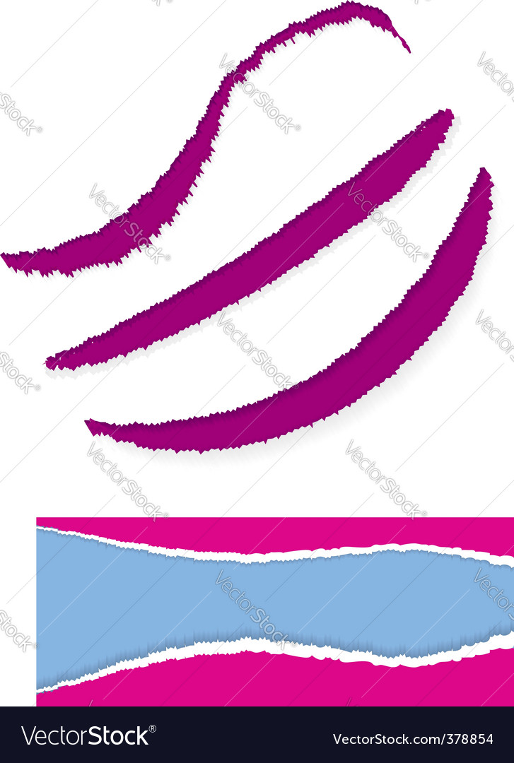Torn paper edge vector