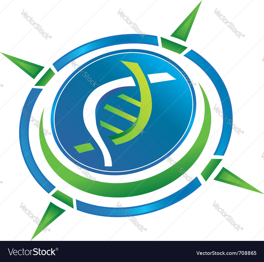 Compass dna logo vector