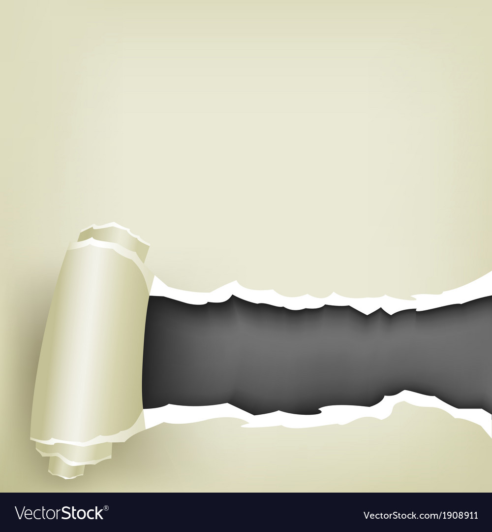 Wrapped paper vector