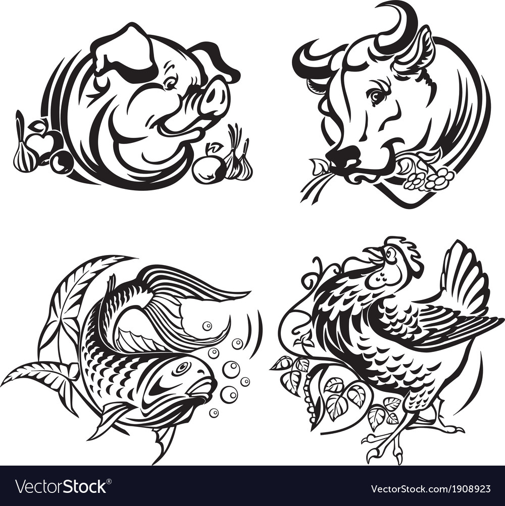 Meat plates vector
