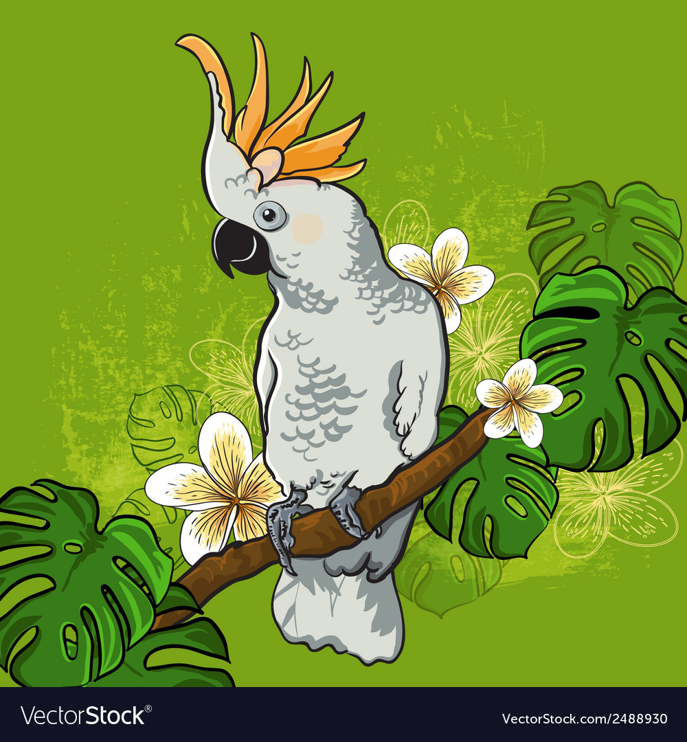 Cockatoo parrot on a branch with flowers vector