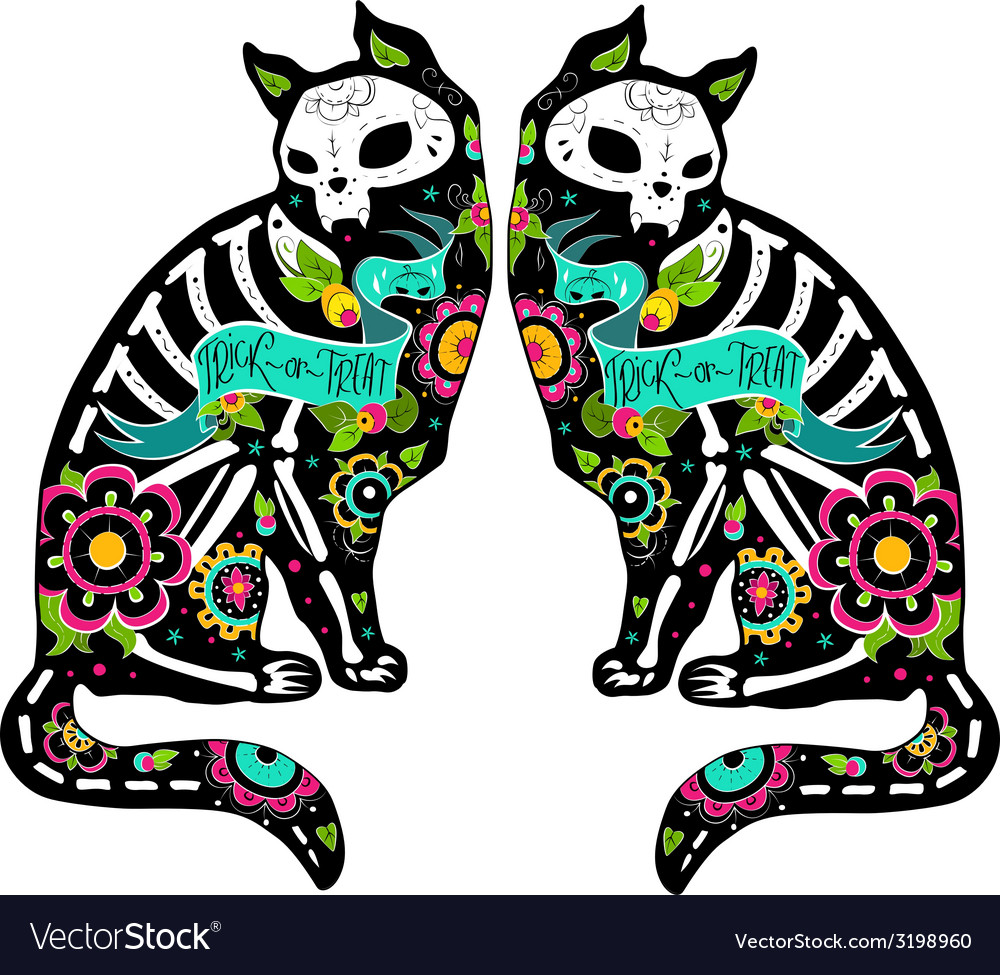 Colorfull cats vector