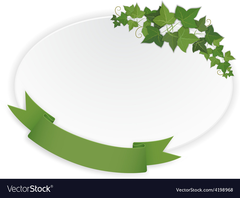 Ellipse banner with ribbon and vine vector